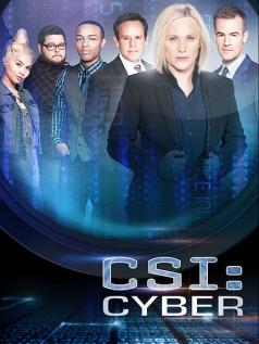 660994-csi-cyber3_430x573